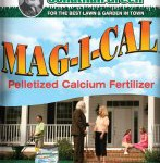 Use Magical For a Greener Thicker Lawn