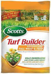fall grass fertilizer